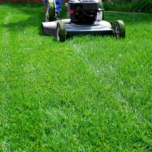 Mowing Brownstown Homeowner Lawn