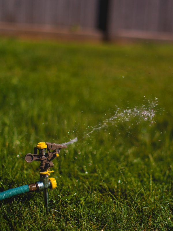 Brownstown lawn maintained with proper watering